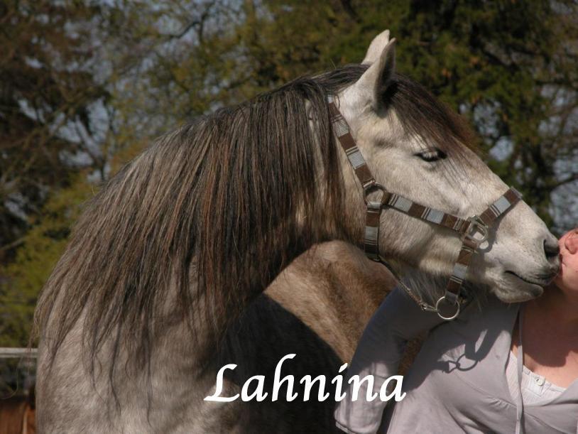 Lahnina