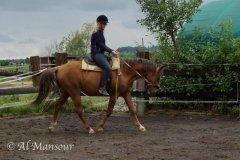 chergui_1707_01_05275.jpg