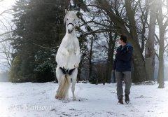 igadir-neige-2018-2.jpg